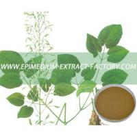 Lyphar Supply High Quality Epimedium Extract Manufactures