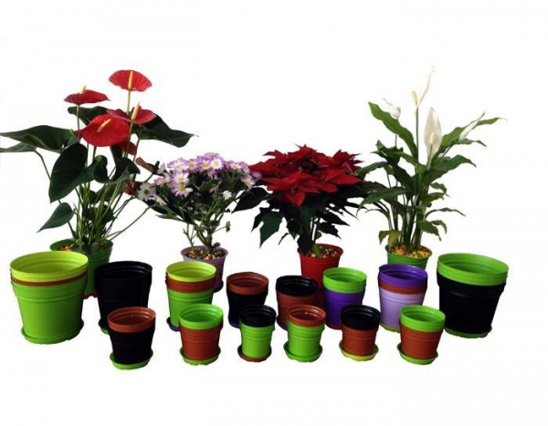 Quality Flower Cup Line for sale