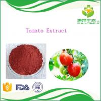Factory Supply Dried Tomato P.E. Extract Powder Lycopene 5% 10% Manufactures