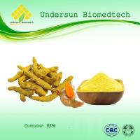 Cheap Liver-protect Supplements HOME China Turmeric root extract/Curcumin manufacturer for sale