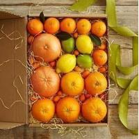 Simply Fresh Winter Citrus NO.2 shenzhen gift hamper delivery Manufactures
