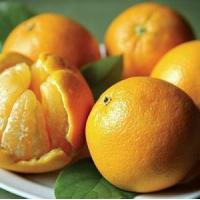CHRISTMAS ORANGES NO.36 deliver gift hamper to shenzhen