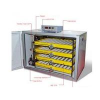 Automatic Poultry Incubator,Automatic Chicken Incubators
