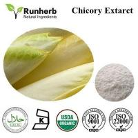 Chicory Extract ,chicory root extract factory