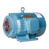 Special inner shaft hole motor for hydraulic oil pump Manufactures