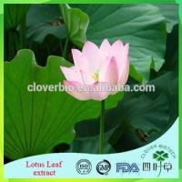 Lotus Root Powder Extract 20:1 /Lotus Seed Extract Nuciferin 0.2% 1% Lotus Leaf Extract Manufactures