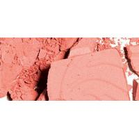 Picture Perfect Powder Blush Manufactures