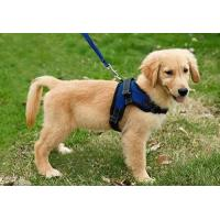 Copatchy No Pull Reflective Adjustable Dog Harness With Handle medium blue Manufactures