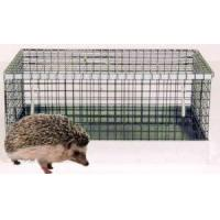 Cheap Hedgehog Cage for sale