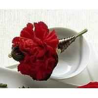 View our full inventory The FTD Red Carnation Boutonniere Manufactures
