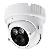 A -HD-IP English 70M 1.3MP HD Array Dome IPC Manufactures