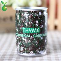 Flowers&Grass Thyme/Flower In Can/Office Mini Plants/DIY Planting