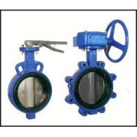 Bi-axial butterfly valve witho Manufactures