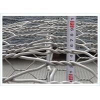 Chicken wire netting Overview Manufactures