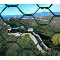 PVC Coated Chicken Wire Manufactures