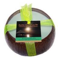 Rocky Point Rumble Coconut Shell Manufactures