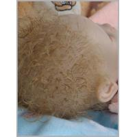 Real baby doll rooting mohair wigs Manufactures