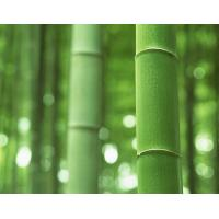 HOW TO CHOOSE BAMBOO TOOTHPICK MACHINE