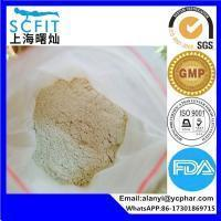 Testolactone Pharmaceutical Intermediates Antineoplastic Stanolone for Weight Loss Manufactures