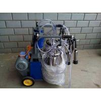 China Piston Typed Double Cow Milking Machine on sale