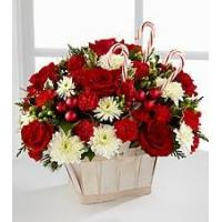 Red Carnation NO.51 shanghai flower delivery Manufactures