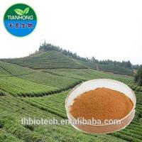 Manufacturer Pure Natural High Quality Green Tea Extract, Green Tea Extract Powder, Tea Polyphenol Manufactures