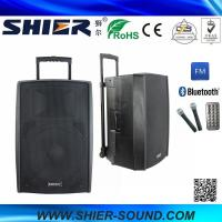 15 Inch 65W Class AB AK15-308 Best Trolley Rechargeable USB Speakers For Dancing Manufactures