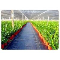 Factory Price weed control mat, Ground cover, weed barrier, landscape fabric, weed control fabric Manufactures