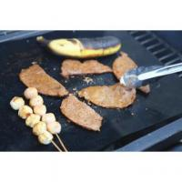 Non-stick Miracle Grill Mat Reviews Manufactures