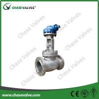 8 Inch Cf8m Globe Valve With Flanged Connection