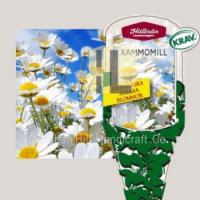 Plant Labels plant hang tag plastic flower label for gardening Manufactures