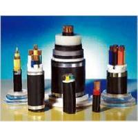 Plastic Insulated and Sheathed Branch Cable with the Rated voltage at 0.6/1kV and Below Manufactures