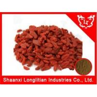 Immunity Enhancers chinese Wolfberry extract,Goji extract powder supplier Manufactures