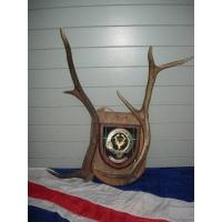 SCOTTISH TARTAN RED DEER ANTLERS