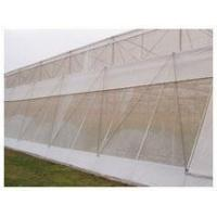 Anti Insect Netting Manufactures