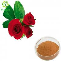 Buy cheap Rose Flower Extract Powder from wholesalers