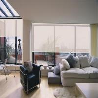 Buy cheap Roller Blinds Blackout Effective Blocking of Ultraviolet Light Office Building from wholesalers