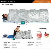 Family/Personal Healthcare Product Far Infrared Sauna Dome Manufactures