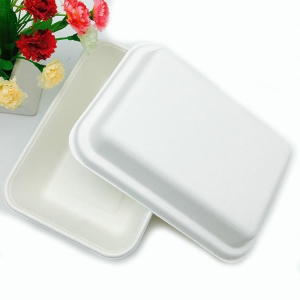 Quality natural bagasse pulp 1000ml takeaway food packaging potato box with lid for sale